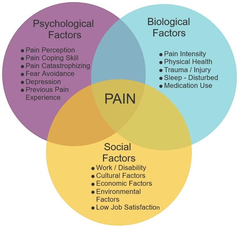 BioPsychosocial Factors Influencing Pain